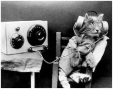 Ακουστική και οπτική γλωσσική μέθοδος